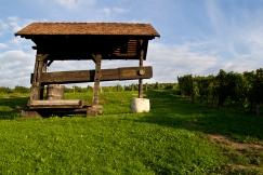 Stara prasa winiarska. Styria, Podravje.