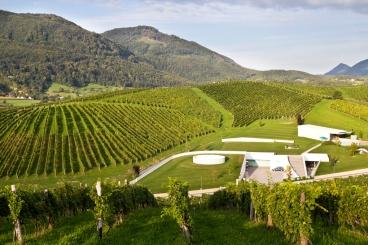 Zlati Grič - najnowocześniejsza winnica w Słowenii. Slovenske Konice, Podravje.
