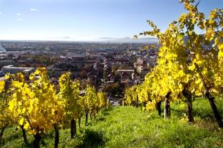 Widok na Maribor z Piramidy, Podravje.