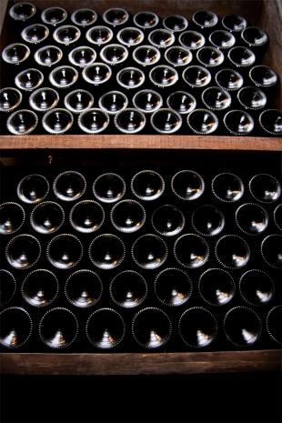 Zeszłoroczne wino czeka na chętnych w piwnicy Plajnšek