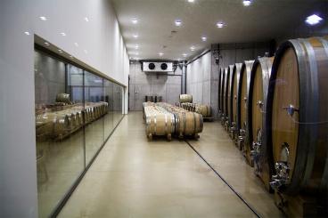 Sala degustacyjna oddzielona jest szklaną ścianą od dębowych beczek z dojrzewającym winem