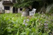 Śródziemnomorski ogród ziołowy
