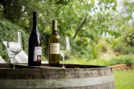 Primorskie wina